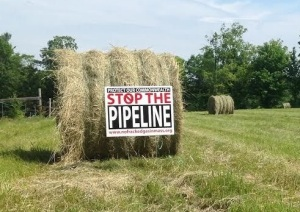 NO-PIPELINE-Greenfyre-Farm